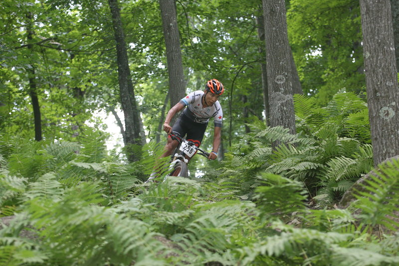 Yeeha! A fast descent at Nordic Mountain!