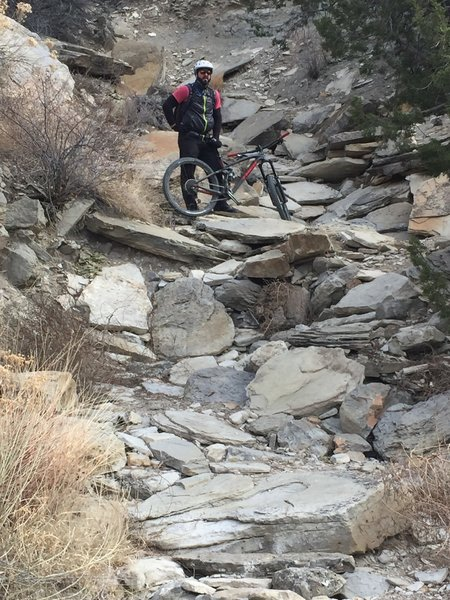 Dead Dog Trail: a great picture of the extensive rock work and steep technical trails in the area.
