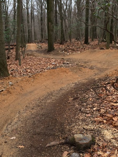 Berms and Table Tops abound on the Aline Gravity Trail. These features can be executed by riders of all levels. Be sure to check your speed!