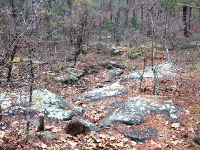 A view looking down the hard line that comes up through the Fraggle Rock section of the Granite Loop.