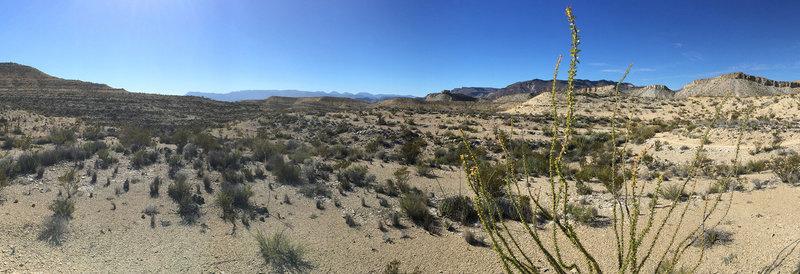 Trails in vast desert.