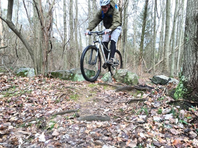 Some rocky sections provide technical challenges.