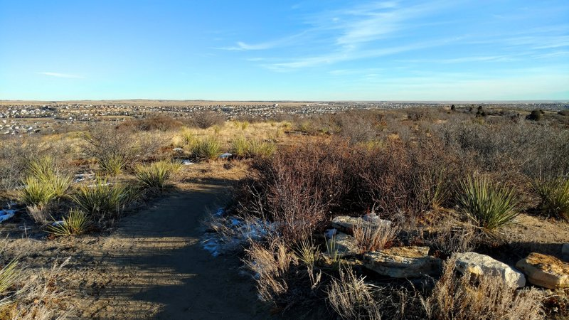 View south from the Chaparral overlook.
