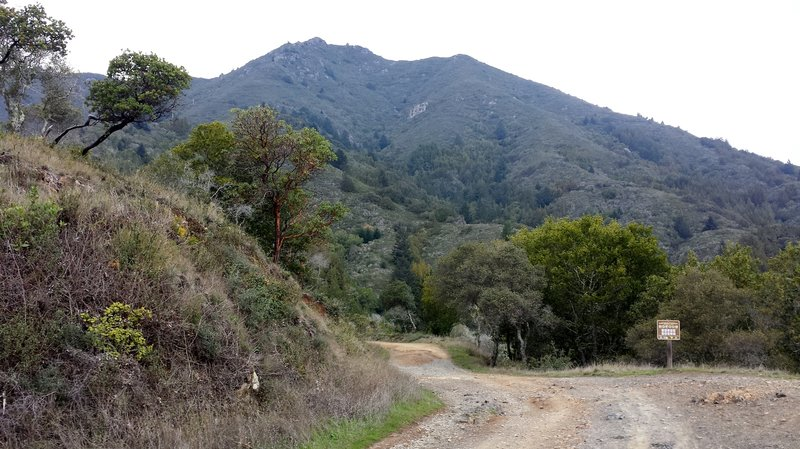 Mount Tam from Old Railroad Grade Trail.