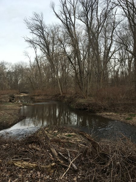 Pennypack Creek is right next to the trail for most of the way.