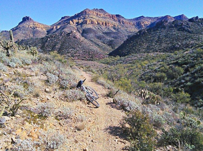 Telegraph Canyon.