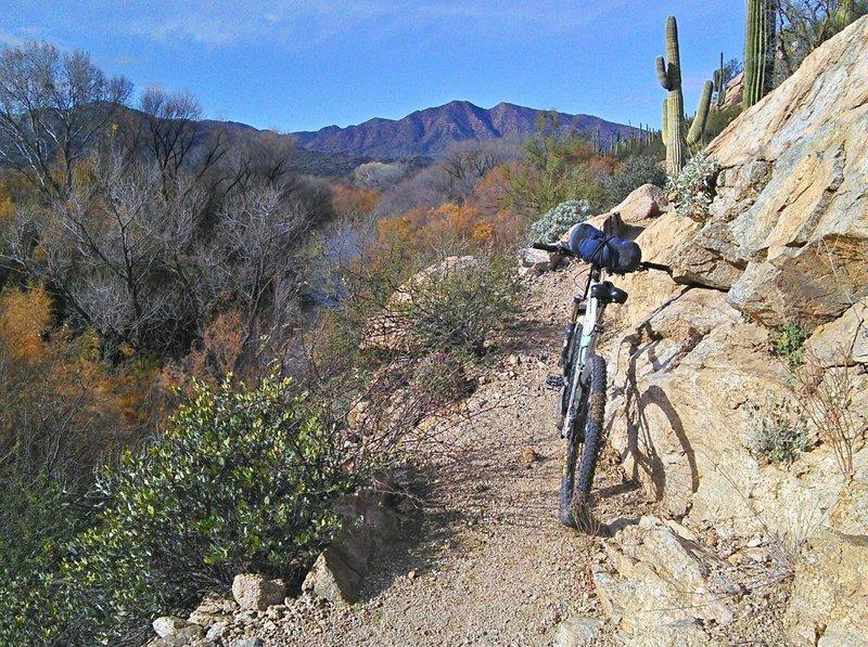 Ledge trail along the Gila.