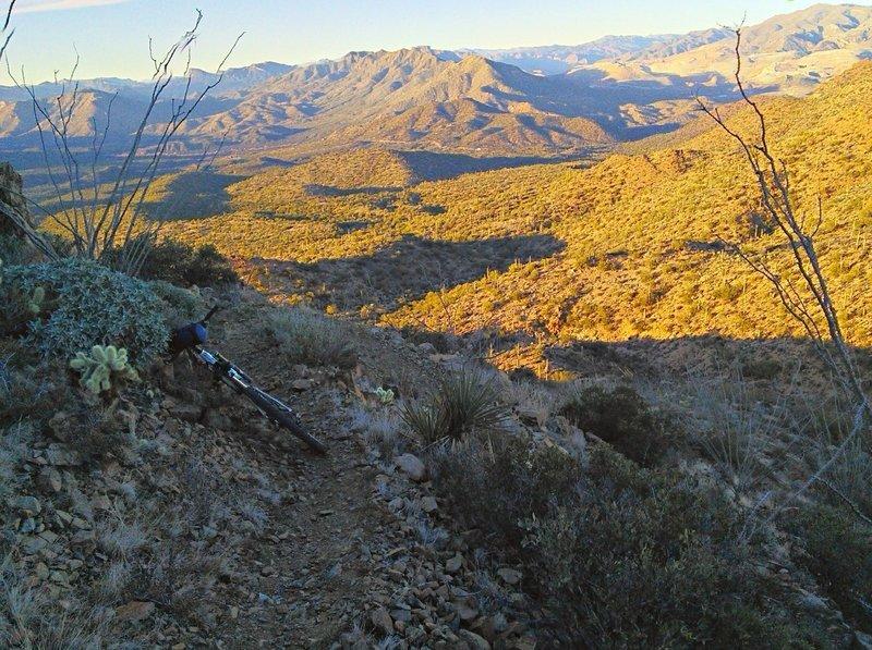 Looking north towards Kelvin.