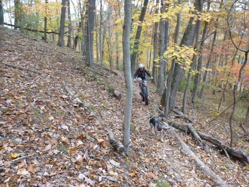 An autumn climb up Warrior Ridge.