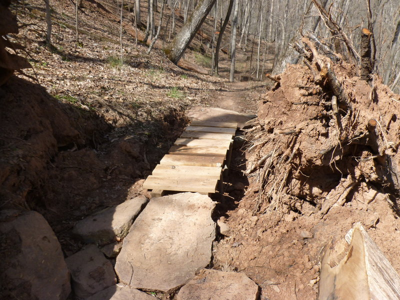 Crossing over pit left from uprooted oak on Warrior Ridge.