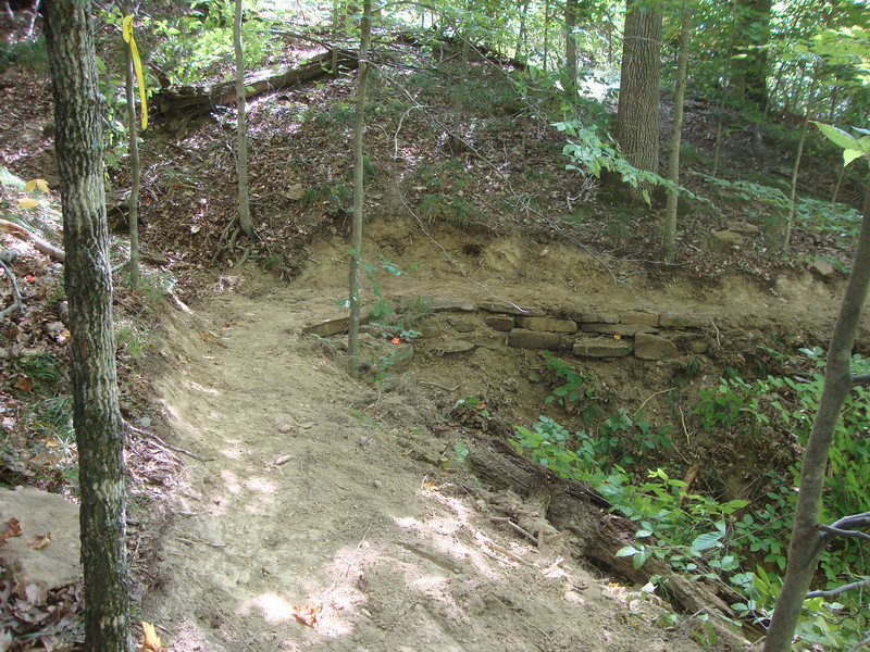Singletrack section of Lucas Hollow.