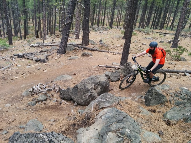 Exploring Phils Trail System in Bend, OR for our first time.