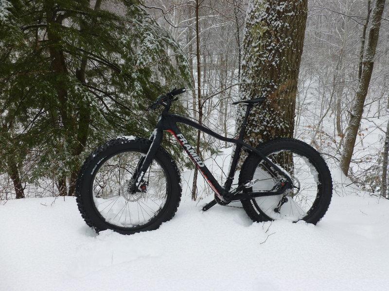 Winter scene along the North Bend Rail Trail.
