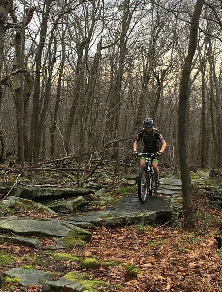 Part of the Lookout Loop is rocky enough to keep your tires clean.