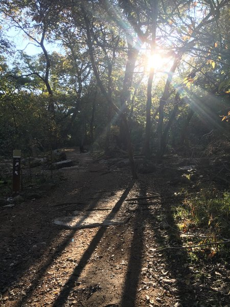 From the Greenbelt Trail, this is the way up to the 360 Trailhead of the Barton Creek Greenbelt.