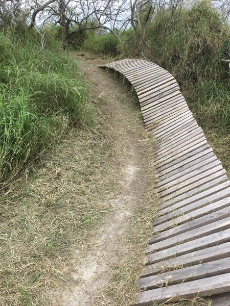 New parts of trail being opened.