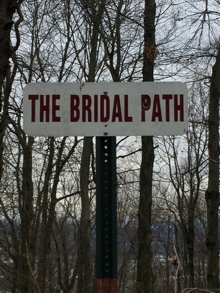 Bridal Path Trail entrance near the north end of Skyline Drive on the Mt. Penn Preserve.