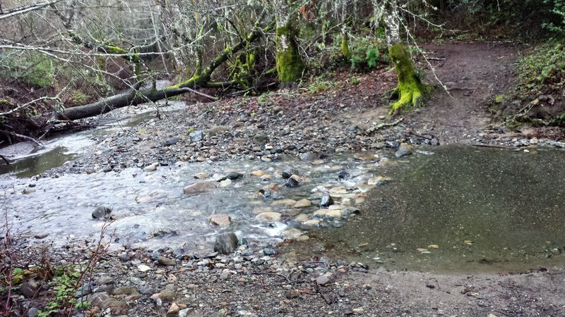 Stevens Creek water crossing on Canyon Trail.