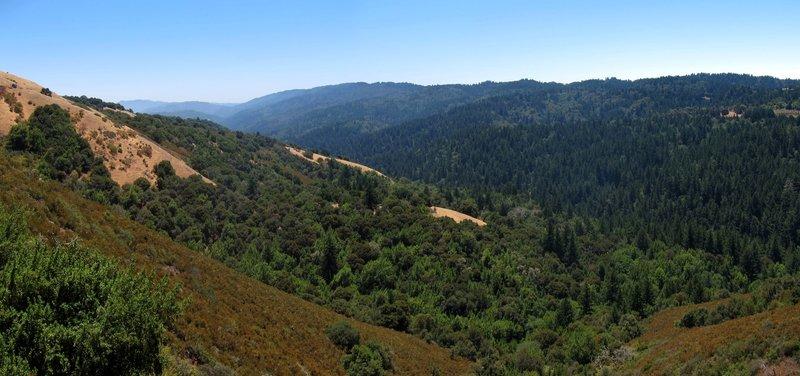 Stevens Creek Valley from Monte Bello Open Space Preserve Bella Vista Trail.