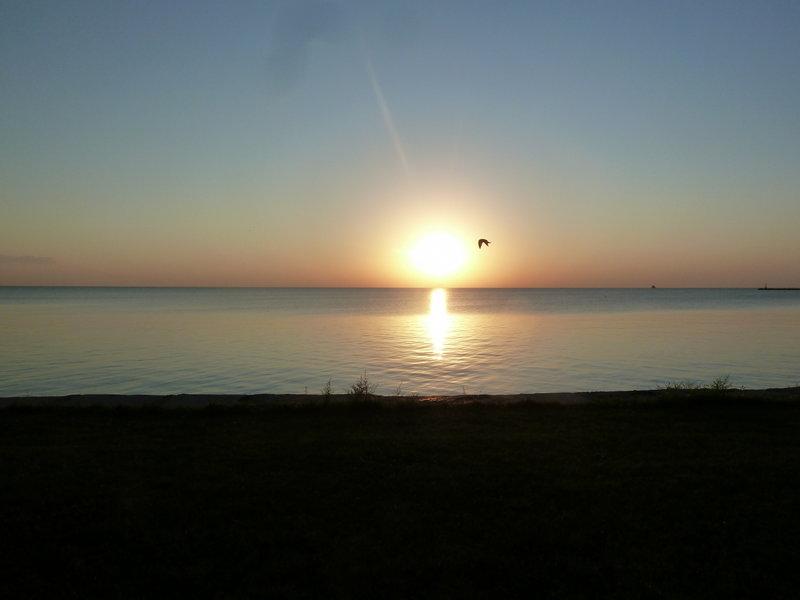 Sunrise at Foster Beach.