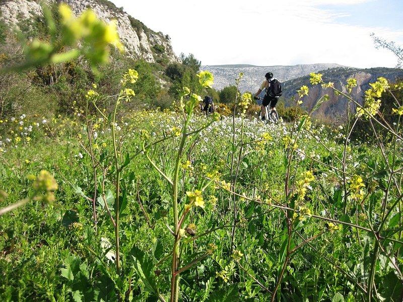 """Start of the """"Senda del Correu"""" (The Post Trail), near the Coll de Garx (Garx Pass)."""