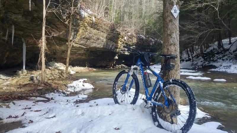 Where the Sheltowee Trace crosses Big Sinking Creek.