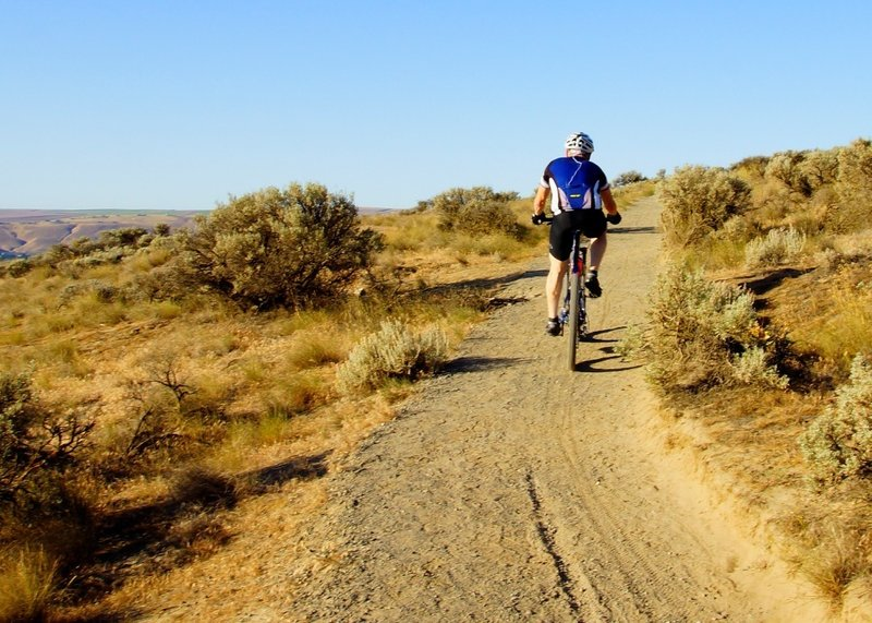 A solo cyclist on Skyline Trail.