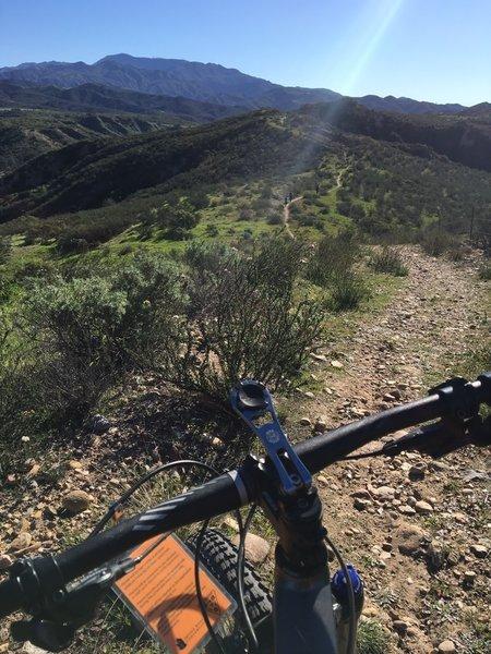 Rocky and sometimes rutty Limestone Ridge