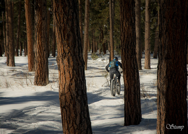 Part of a winter groomed fat-biking loop, Park Ave. is not just your summer attraction.