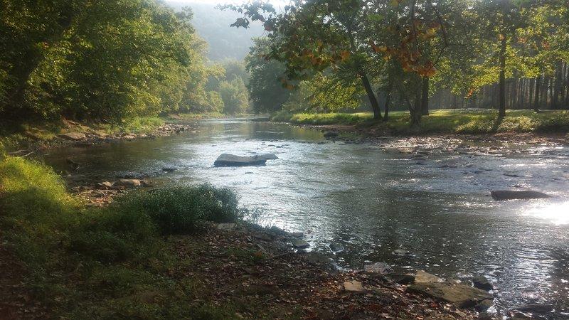 Along the beginning of Lower Vondergreen trail along Beaver Creek.