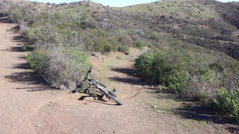 New Bridgegate Trail trailhead