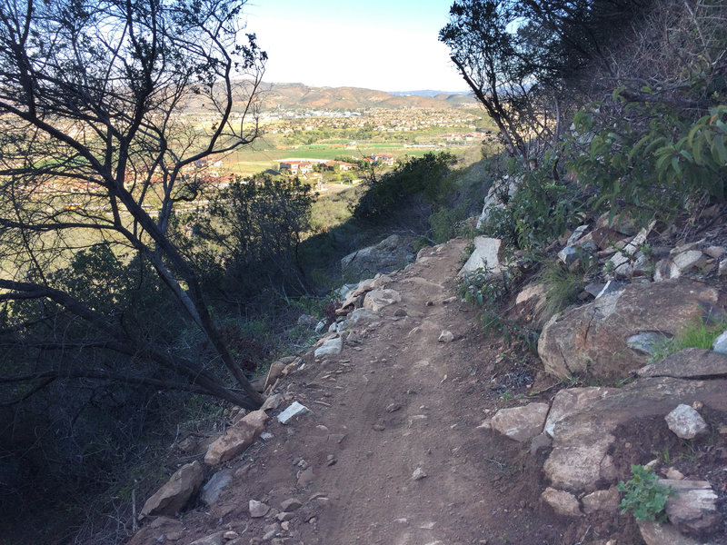 Lilac Miners Peak Loop overlooking out to 4s Ranch.  Narrow trail, but the lower half is so much fun!