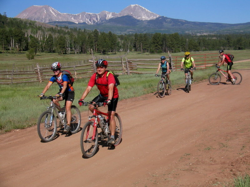Pine Flats with the La Sal Mts. rising up