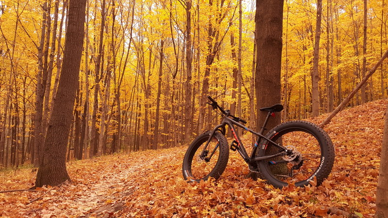 Nice relaxing ride on the Alpha Trail this last fall.
