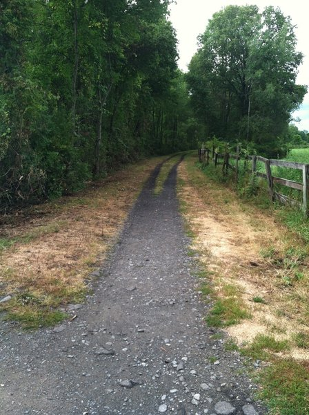 Looking northward on the Wallkill Valley Rail Trail and near a small parking area at Coffey Road and near Mile Marker 11 in New Paltz. The Wallkill rail trail bridge at Springtown is less than half a mile south.