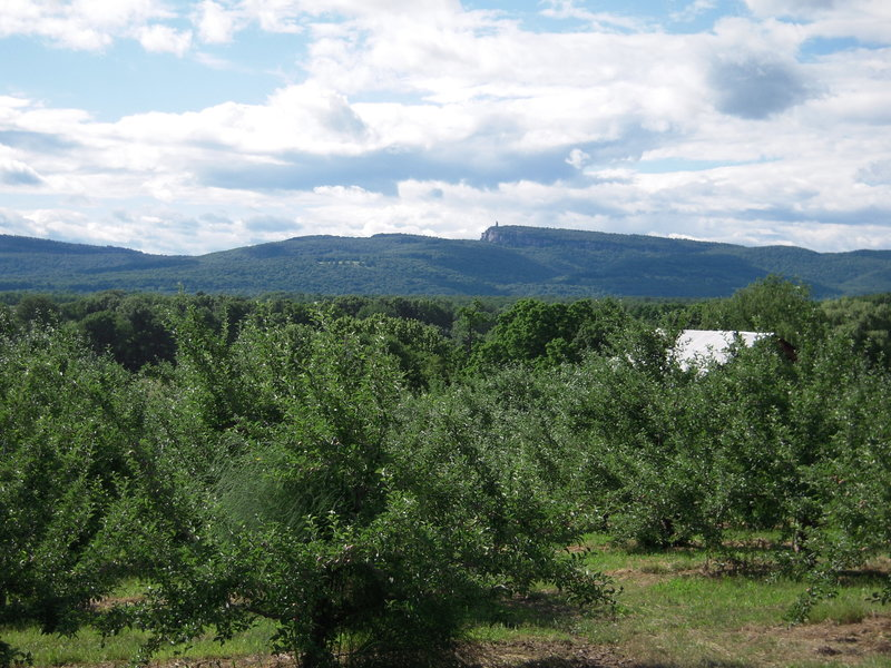At mile 5.5 is Dressell Farm. The trail passes through the apple orchard with spectacular views year round. Locals watch Independence Day fireworks which take place at the Ulster County Fair Grounds across the river. Be sure to have a bike light for the night ride home.
