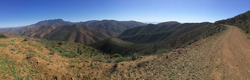 Looking towards Sycamore Canyon Fireroad.
