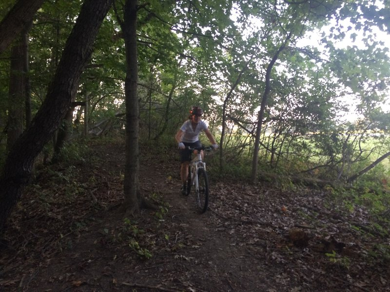 Finishing up the Spinoza side of the Rouge Park MTB singletrack trail.