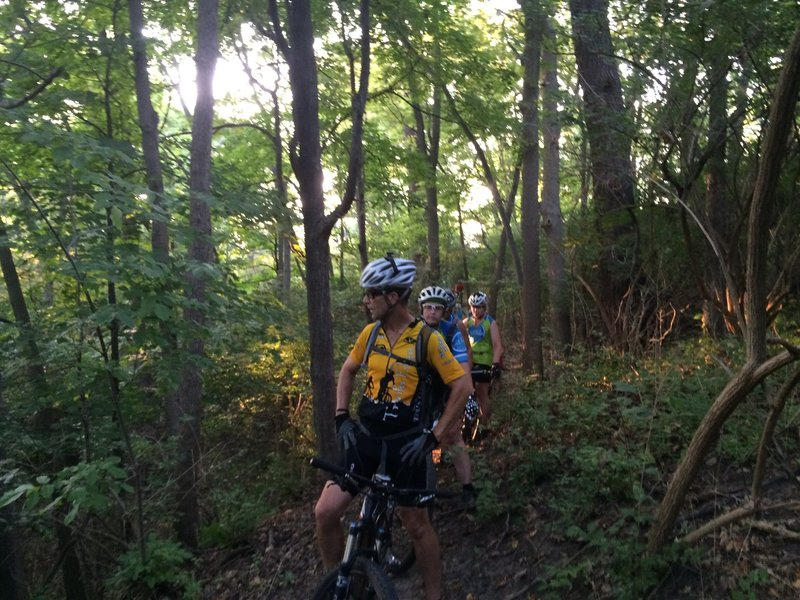 The Rouge Park MTB Trail - secluded singletrack in a natural setting just west of the big city.