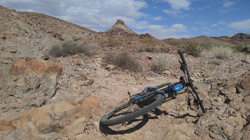 Some rare bare bedrock.