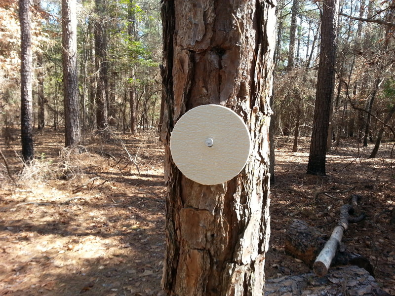 Watch for these little white disc's along the trail, they will keep you from getting lost.