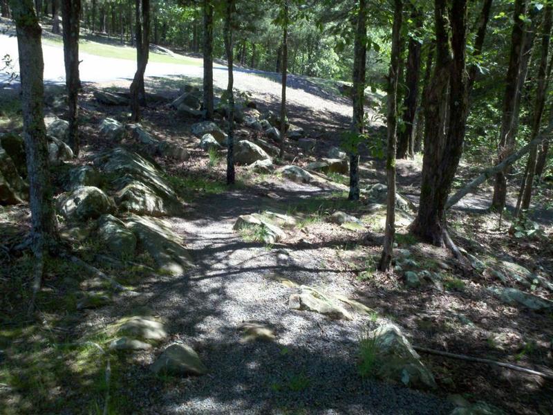 Nice little rock garden.