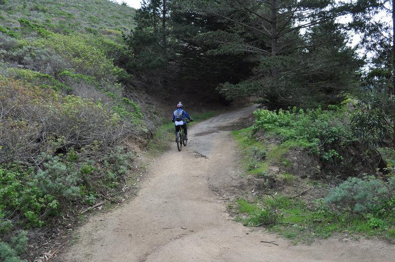 Climbing Old Pedro Mountain Road.