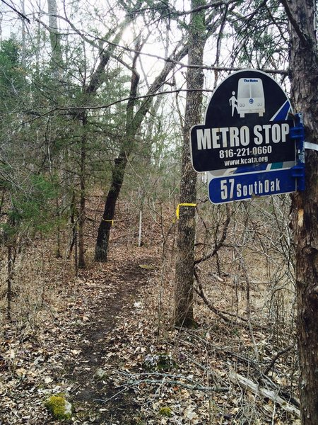 Trail sign for 57 South Oak (Bus Line).