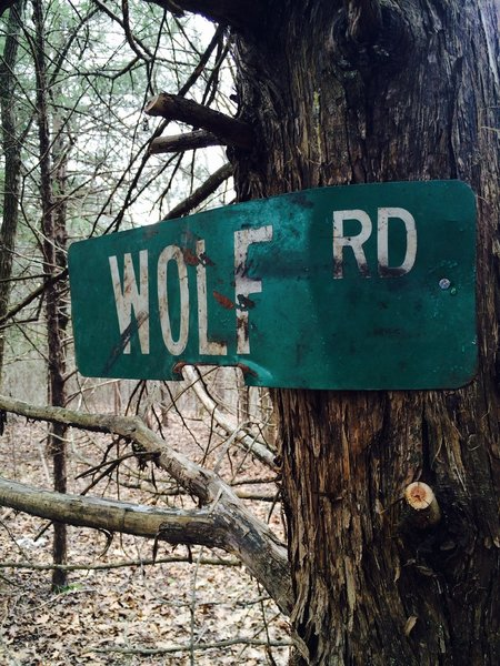 Trail sign for Wolf Rd.
