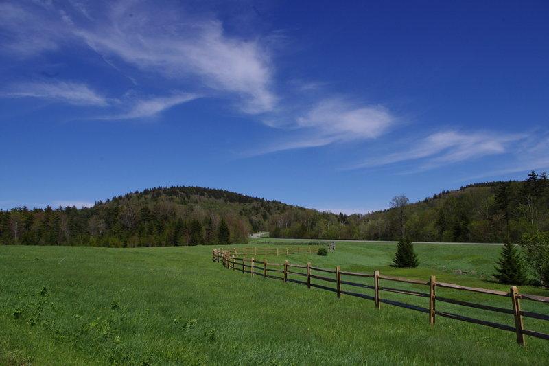 Highland meadow.