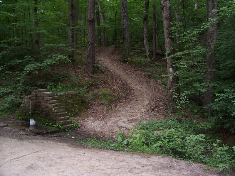 Pipe Springs and the Charlton Trail. This is not the LOViT trail. The trail in the picture takes you to Charlton Rec. Area.