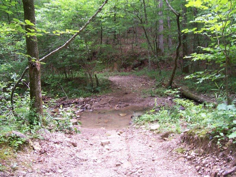 Creek Crossing on Charlton/Lovit just after Pipe Springs.