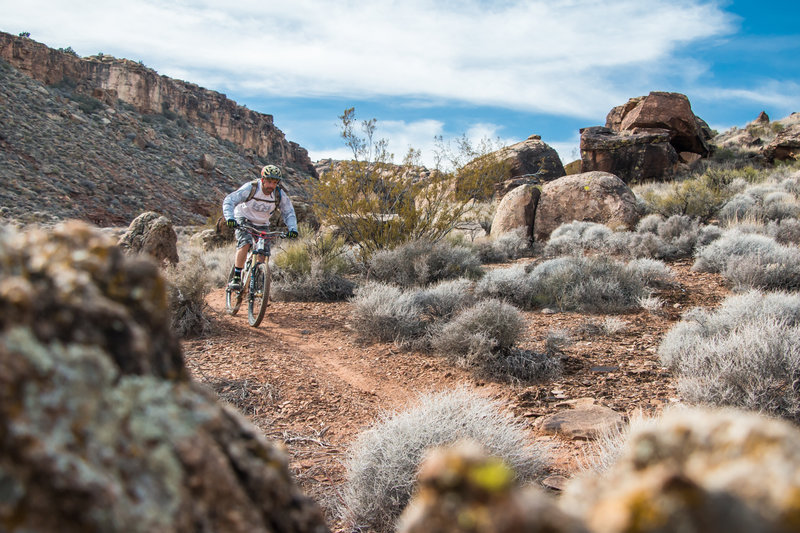 In the gully of Suicidal Tendencies, a must-ride in St. George!