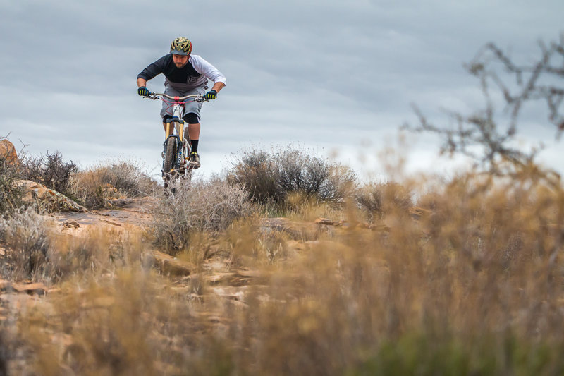 The Zen Trail in Santa Clara, UT is a must-ride. Great downhills and fun terrain to play on for hours.